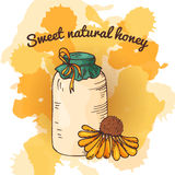 Apiary icon for your design. Vector sketch, sweet natural food. Honey production in hand drawn style Royalty Free Stock Image