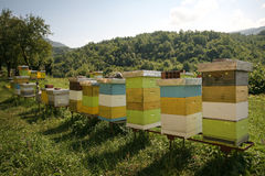 Apiary at the monastery, Montenegro. Small apiary at the monastery, Montenegro stock photo