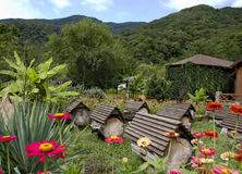 Apiary in the mountains. Royalty Free Stock Image