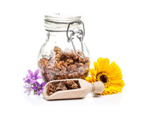 Apiary product. In glass jar royalty free stock images