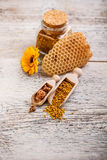 Apiary products Stock Image