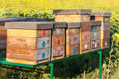 Apiary Royalty Free Stock Photos