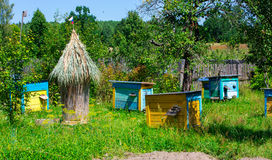 Apiary   in the sunny day Stock Photo