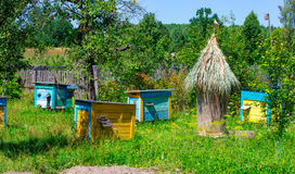 Apiary   in the sunny day Stock Image