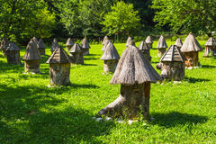 Apiary with unusual hives in the mountains of Abkhazia stock photo