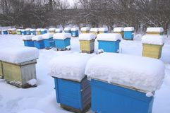 Apiary in wintertime Stock Images