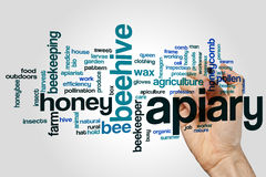 Apiary word cloud Royalty Free Stock Image