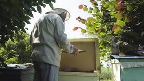 Apicoltore che controlla i favi con le api nell'alveare video d archivio