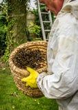 Apicoltore con un alveare con una colonia di api Immagini Stock