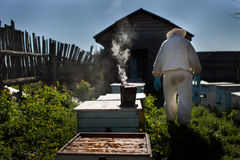 apiculteur Images libres de droits