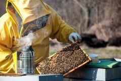 apiculteur photo stock