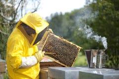 Apiculteur avec le nid d'abeilles photographie stock libre de droits