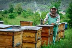 Apiculteur dans un rucher près des ruches Apiculture rucher photographie stock libre de droits