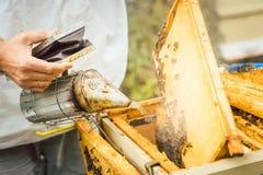 Apiculteur employant la fumée pour calmer vers le bas ses abeilles photographie stock