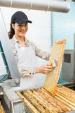 Apiculteur féminin Brushing Honeycomb Photo stock