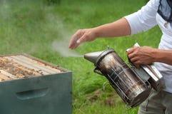 Apiculteur utilisant le fumeur de ruche Images stock