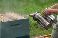 Apiculteur utilisant le fumeur de ruche Image stock