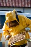 apicultor Foto de archivo