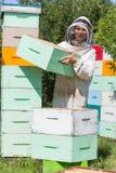 Apicultor Carrying Honeycomb Box en el colmenar Imagen de archivo
