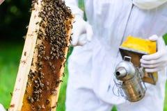 Apicultor con beeyard y las abejas que controlan del fumador Imagen de archivo