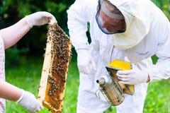 Apicultor con beeyard y las abejas que controlan del fumador Foto de archivo