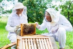 Apicultor con beeyard y las abejas que controlan del fumador Imagen de archivo libre de regalías