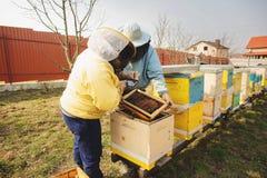Apicultor da fam?lia Apicultor Inspecting Bee Hive ap?s o inverno fotografia de stock royalty free