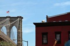 Apicultor en tejado de NYC Fotos de archivo libres de regalías