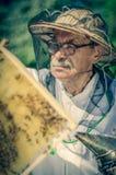 Apicultor mayor que hace la inspección en colmenar en la primavera Foto de archivo libre de regalías