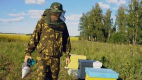 Apicultor que camina y que examina su fila del campo floreciente cercano de las colmenas Imagen de archivo