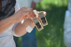 Apicultor que mostra o favo de mel imagem de stock