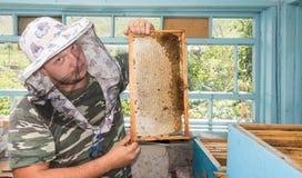 Apicultor que se sostiene en panales de la abeja de las manos de la cera en un marco de madera Imágenes de archivo libres de regalías