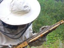 Apicultor que sostiene la colmena Imagen de archivo