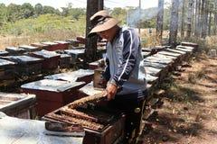 Apicultor que trabaja en granja de la abeja Imágenes de archivo libres de regalías