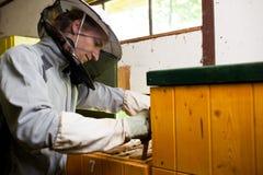 Apicultor que trabaja en un colmenar Imágenes de archivo libres de regalías