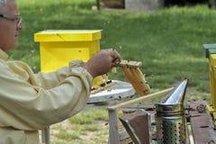 Apicultor que trabalha com colmeia de acoplamento foto de stock royalty free