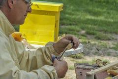 Apicultor que trabalha com colmeia de acoplamento foto de stock