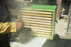 Apicultor rociado con humo Imágenes de archivo libres de regalías