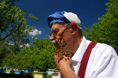 Apicultor y sus abejas Imágenes de archivo libres de regalías