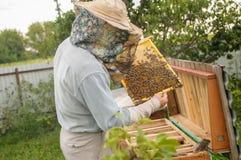 Apicultura de la apicultura de la apicultura en casa en casa en casa fotos de archivo libres de regalías