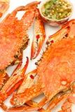 apicy krab piec na grillu kumberlandu tajlandzkiego stylowy Fotografia Stock