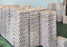 Apilado de huevos en las bandejas del papel Fotografía de archivo libre de regalías