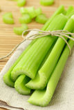 Apio verde Imagen de archivo libre de regalías