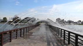 Apire Park lake. Bridge with fountain in a lake at park located in aspire zone, Doha Sports City, Qatar, Middle East. The Doha`s biggest park is popular place stock footage
