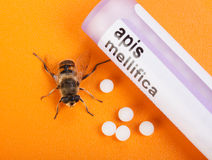 Apis Mellifica homeopathic medication and bee Stock Photo