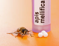 Apis Mellifica homeopathic medication and bee Royalty Free Stock Photography