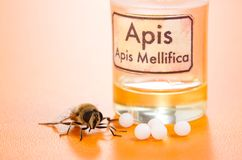 Apis Mellifica homeopathic pills, poison and bee Royalty Free Stock Photos
