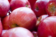 aplauzów jabłka Obrazy Stock