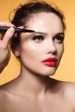 Aplicação do rímel Close up longo dos chicotes Fotografia de Stock