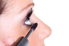 Aplicación del maquillaje Imagen de archivo libre de regalías